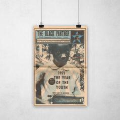 Poster - Movimento Pantera Negra -1971 - O ano do jovem